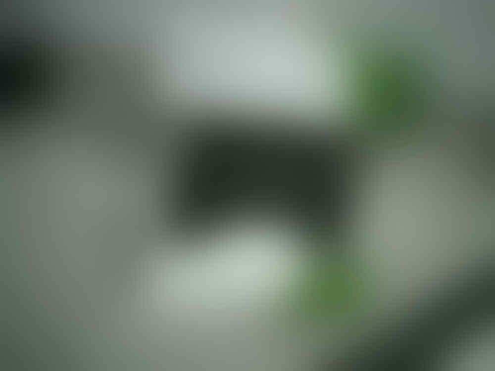Maen Games MotoGp Online dapet Stik XBOX
