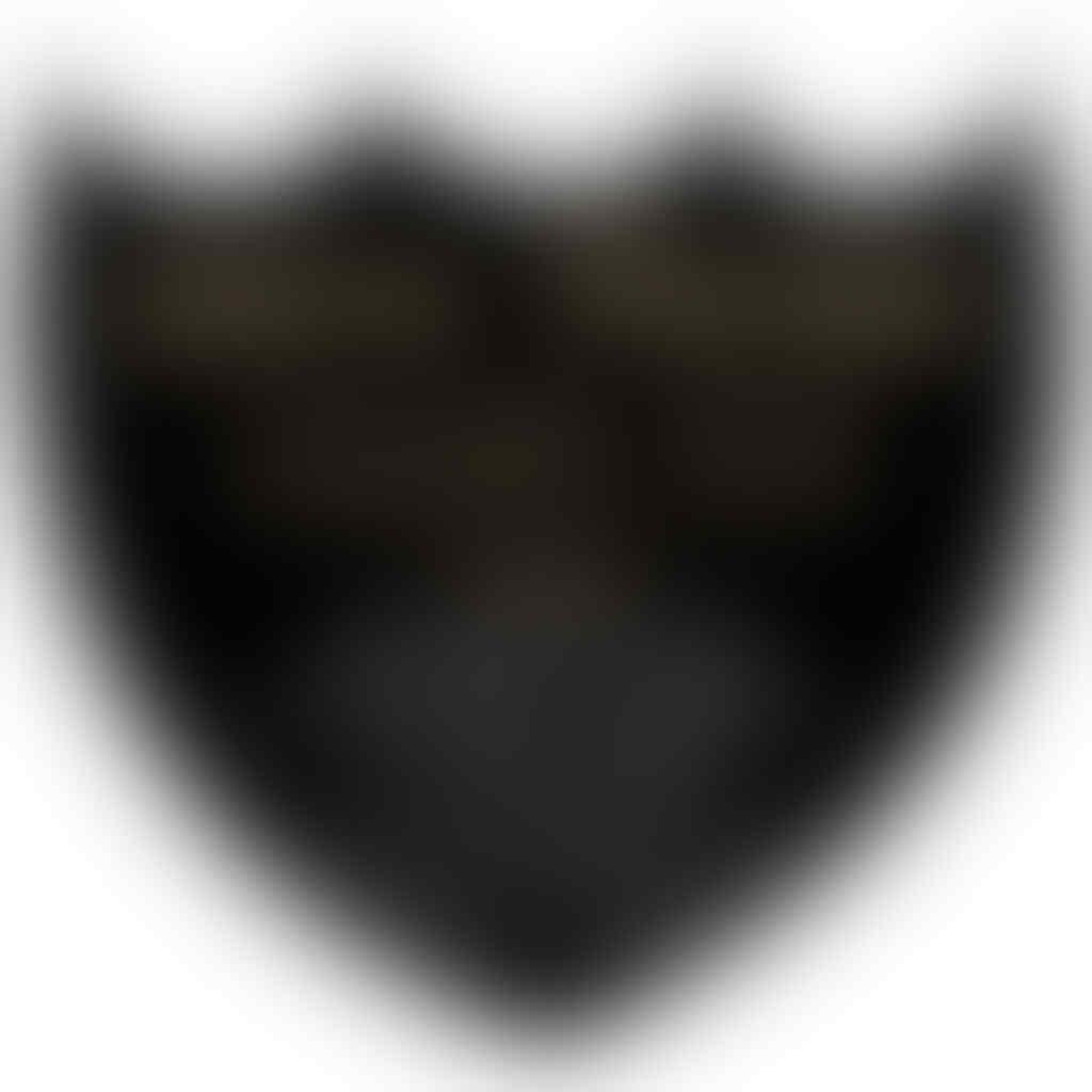 CELANA PENDEK PANTAI / SHORT BOARD QuickSilver (CLOTH.03 STORE)