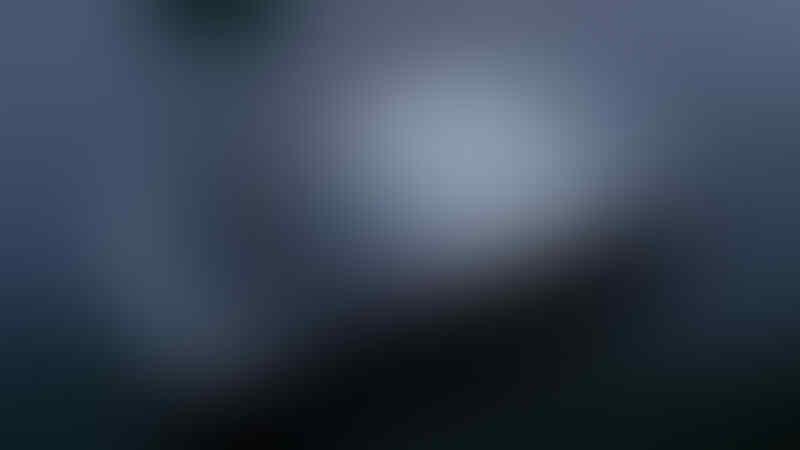 blackberry onyx 2 9780