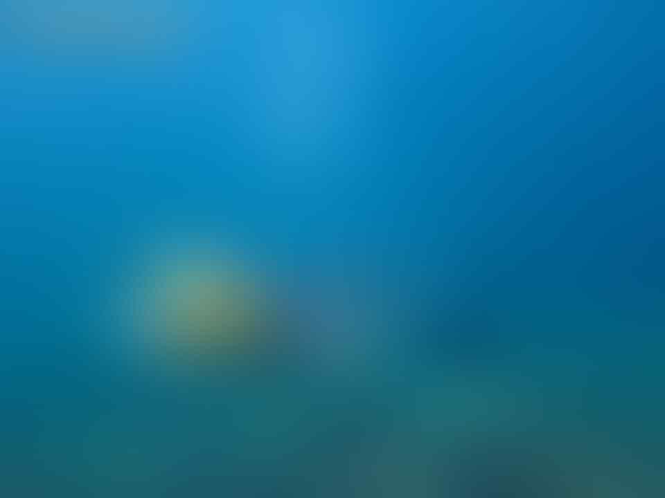 [PARADISONESIA™] Travel Pulau Pari Kaskus