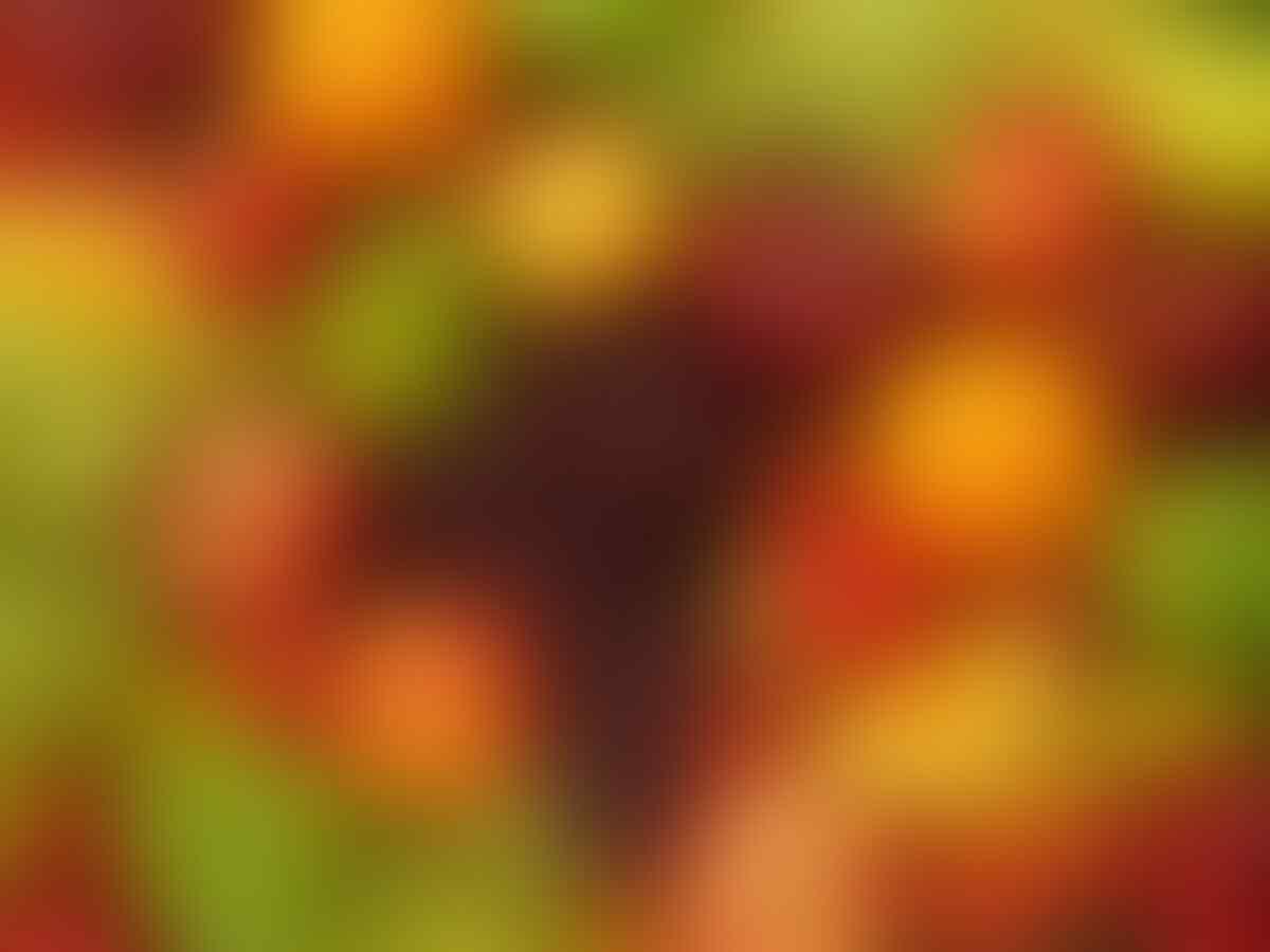 Beda Warna Buah & Sayur, Lain Pula Khasiatnya