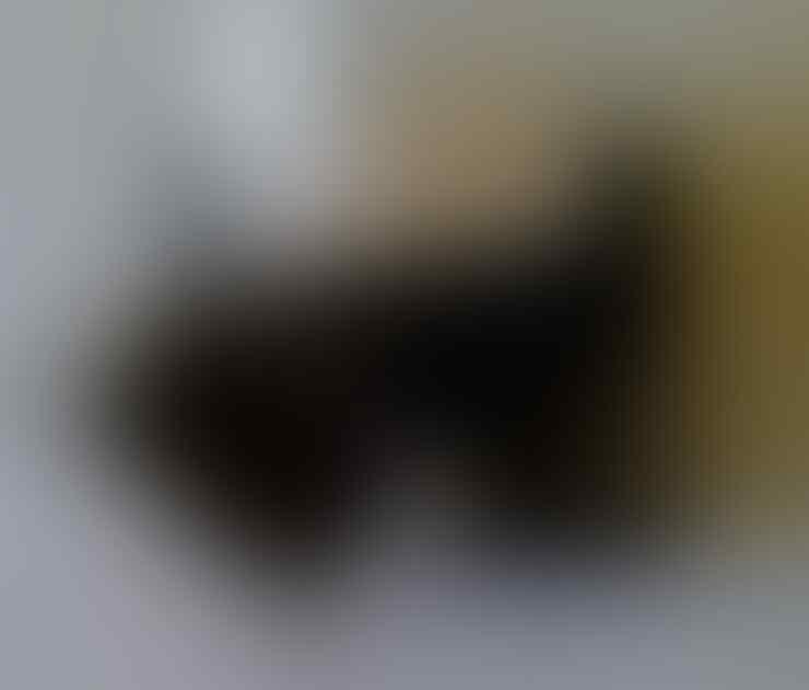 SAMSUNG GALAXY S2 i9100 WHITE FULLSET MALANG