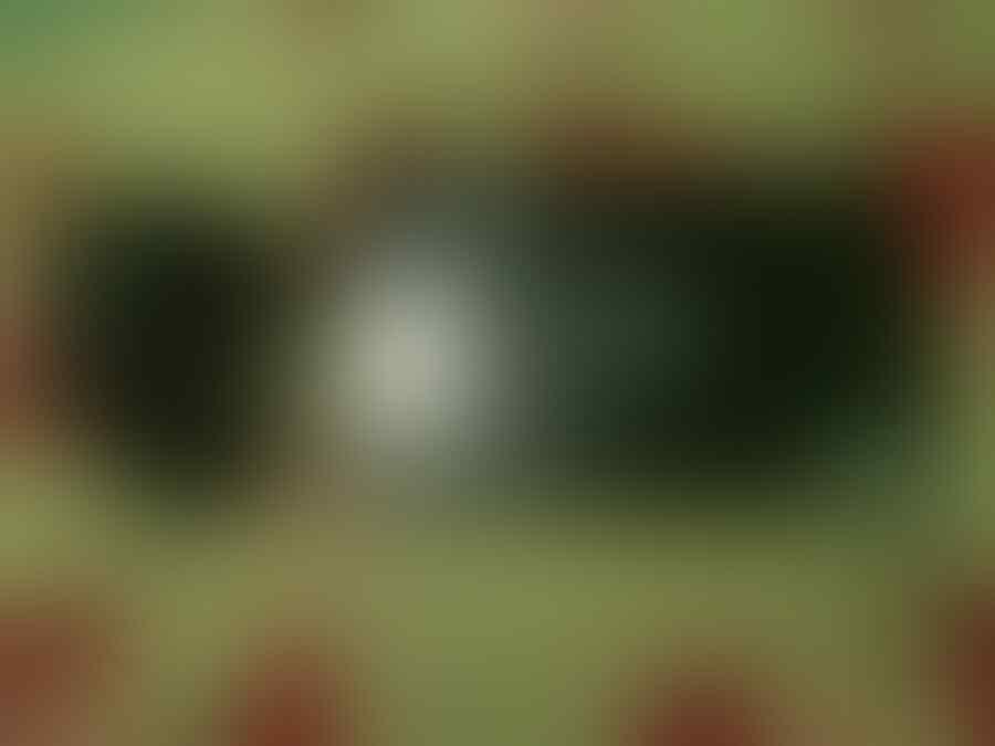 WTS Axio Picopad Batangan Error Hardware [Jogja]