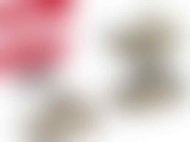 CROCS & FLITFLOP ORIGINAL MURAH PLUS BONUS