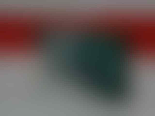 IPOD TOUCH 4TH GENERATION 32GB MULUS TERAWAT [LIKE NEW]
