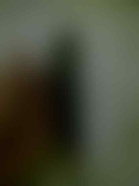(LAGI!) HTC desire Hd harga hari ini