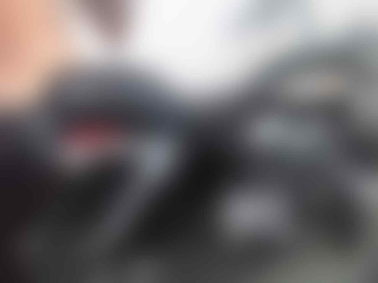 harley davidson sportster Roadster
