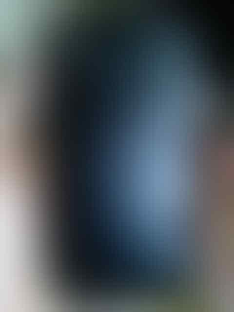 JUAL / Barter / TT HTC Sensation Z710E Bonus Otterbox
