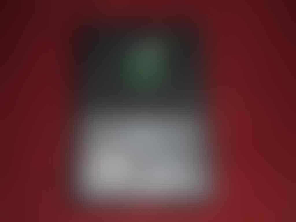 Blackberry Z10 Q5 Q10 9790 9900 9220 9320 9981 9800 9360 Bonus Powerbank