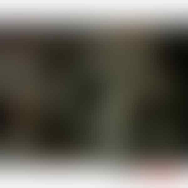 Jual Blackberry 9860 Monza ( garansi CTN dan asuransi OkeSure )
