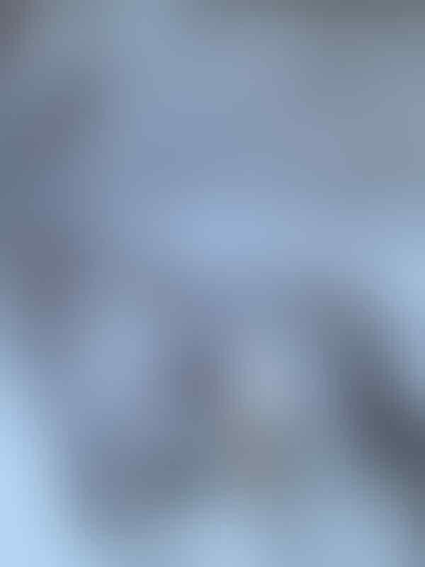 Jacket adidas adicolor white series 100% ori