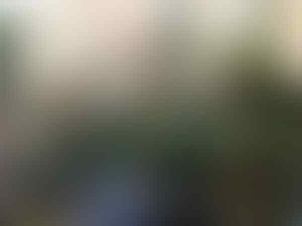 analisis: PANTSYR S-1 DAN S-300, KOMBINASI MAUT ARHANUD TNI
