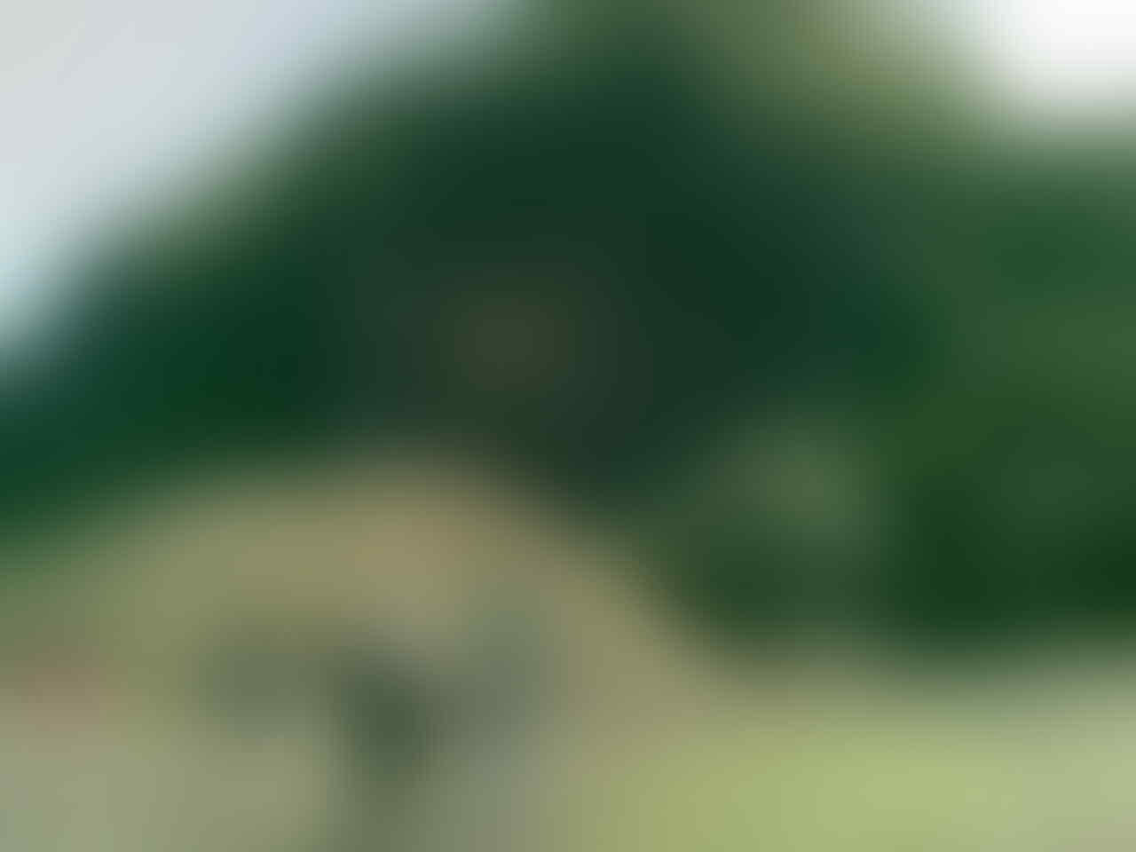 ۩۞ [FR] Berlibur, Bermain dan Berbagi - Kaskus Regional Cilacap ۩۞