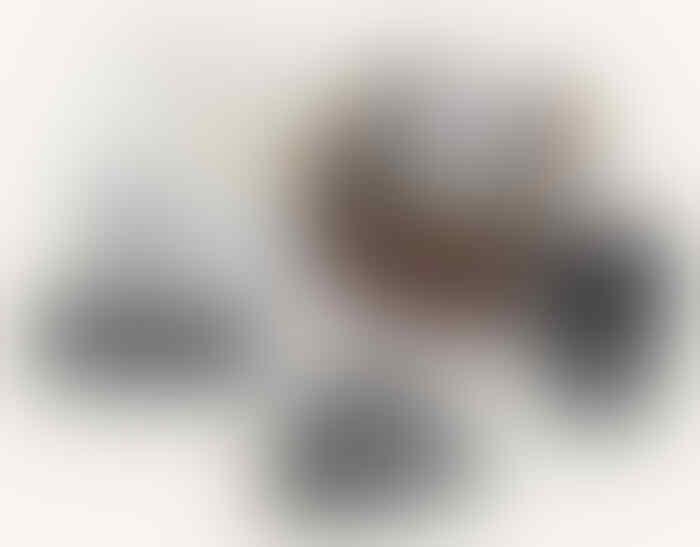 [CYBER] Earphone Earbud Yuin BNIB TERMURAH