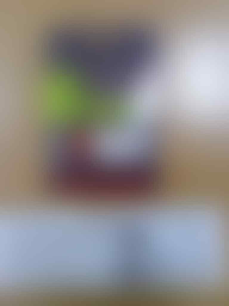 ஜ۩Ƹ̵̡Ӝ̵̨̄Ʒ۩ஜ Testimonial DJBSTORE dari agan / aganwati & nomor resi pengiriman JNE