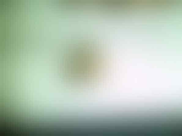 KOIL KAWAHARA,FLYING ROLLER 11GR,PER CVT 1000RPM SCOOPY BEAT