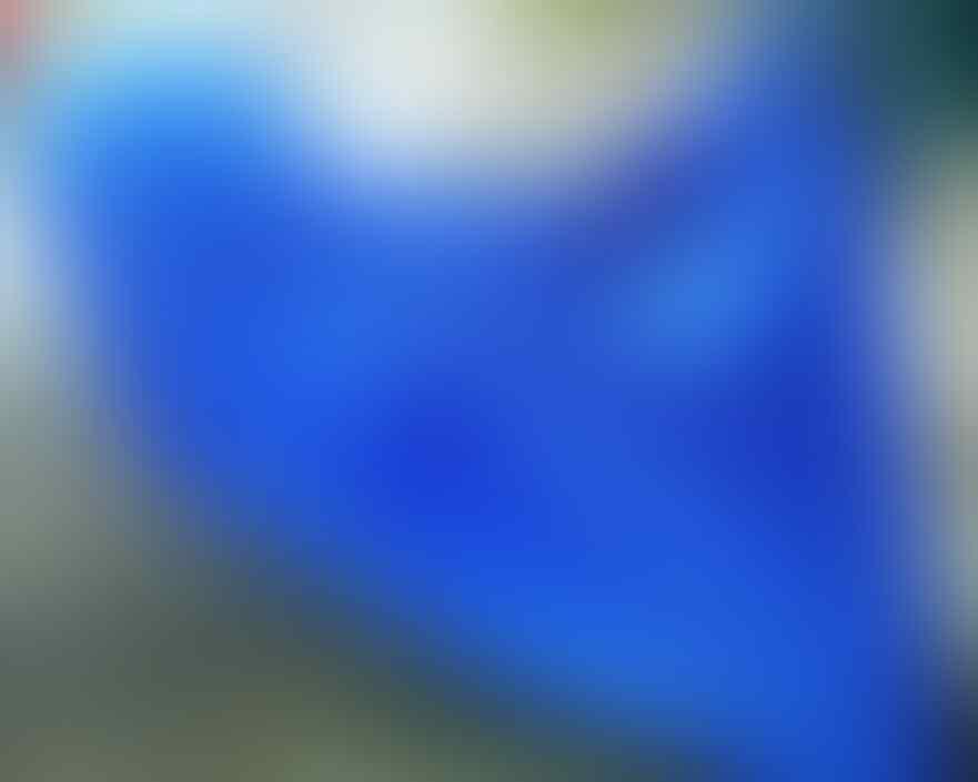 cover super pelindung motor dari panas debu dan ujan warna biru