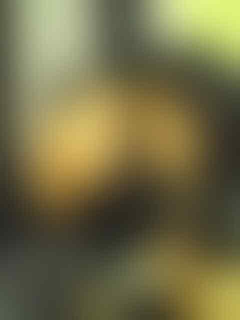 SURAT TERBUKA-PENIPUAN a/n REZA IRAWAN -MANDIRI(1240006382536)