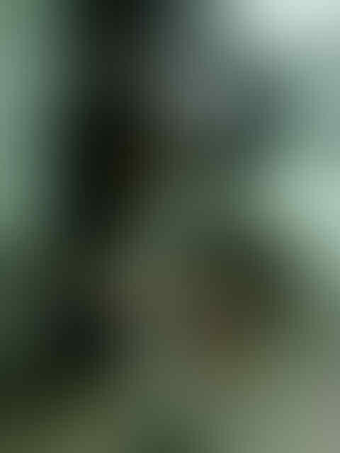 APARTEMEN CENTRAL PARK TIPE 1 BR TOWER AMANDINE FULLY FURNISHED INTERIOR DESIGN!!!!