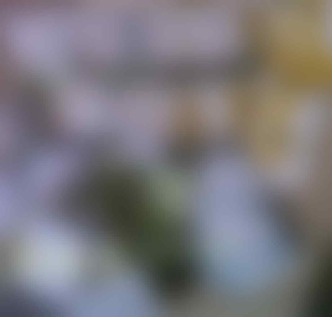Koyo Bamboo SILVER Foot Patch Detox--Paling Murah se Kaskus RAYA