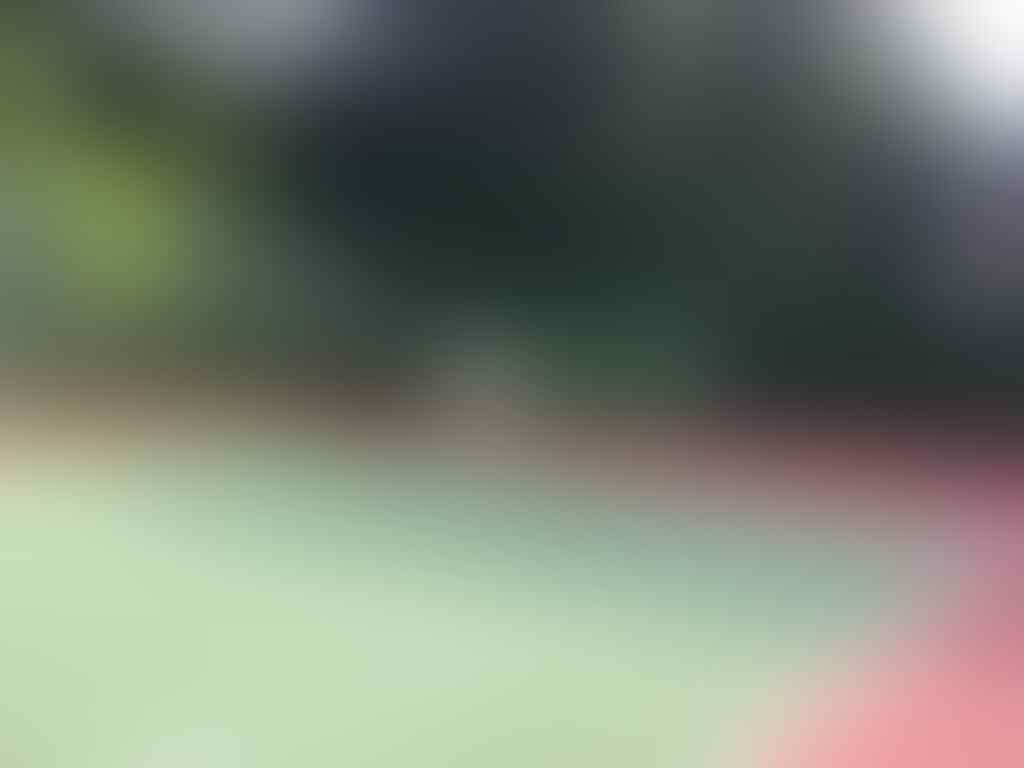 Latihan Tennis Bareng yuks domisili Tangerang Selatan (Pemula Dewasa)