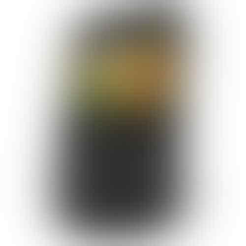 BlackBerry Curve 8520 Gemini - Black