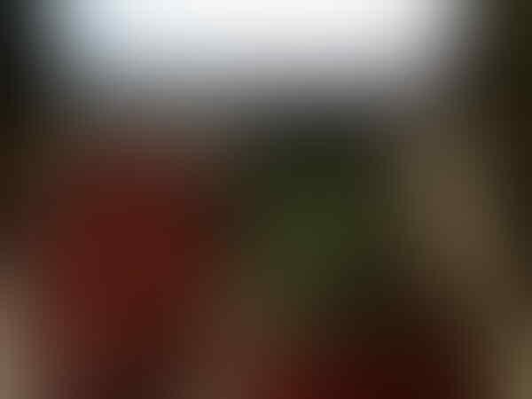 ★★★ ◤(¬‿¬)◥ ~ VimeBox Testimonial ~ (◡‿◡✿) ★★★