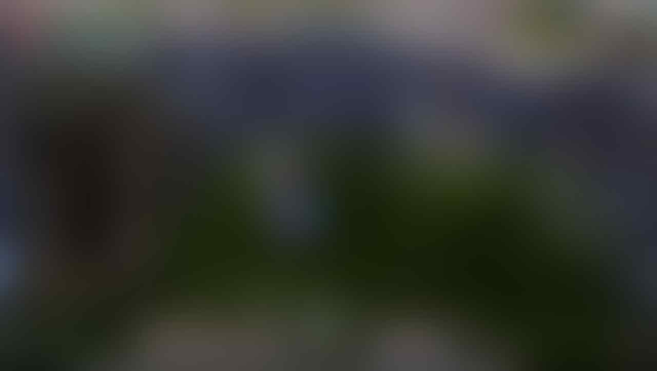 J<Char COD JKT Dragon nest Pyro