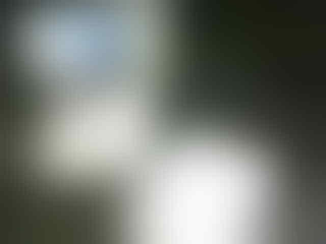 ASLI 100% HWI | CMP 3green Frutablend 140rb Mrpro Macaunited Nusense odolgigi 10rb