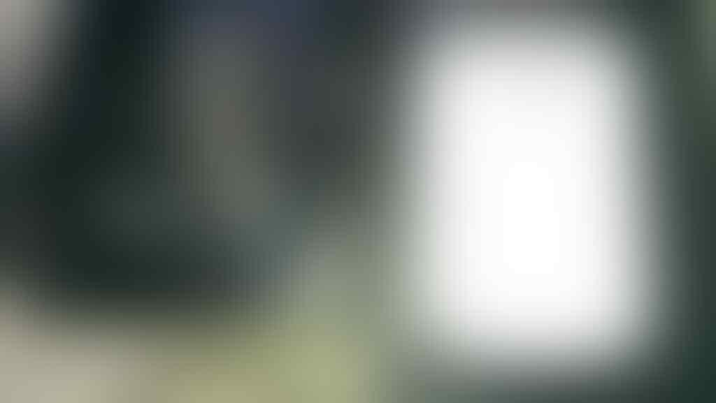 """JUAL BB CURVE APOLLO """" WHITE """""""