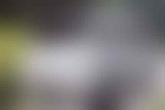SUZUKI CARRY PICK UP 100% TERBARU 2013