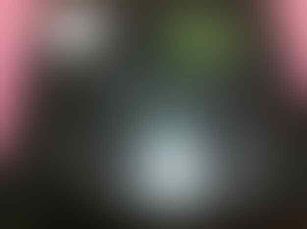 BlackBerry Bold 9780 (Onyx 2)