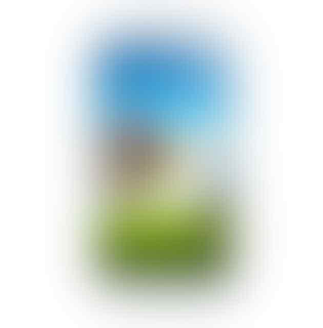 Replika Samsung Galaxy S4 NEW