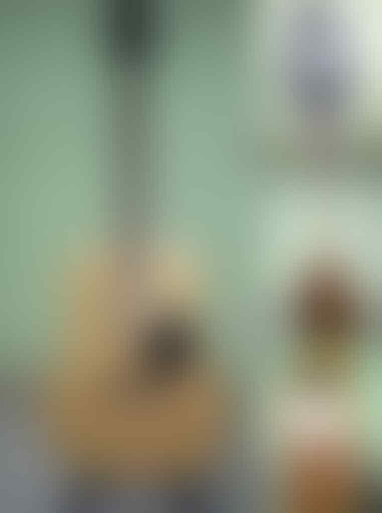 Gitar Akustik / Guitar Acoustic SAMICK / GREG BENNETT / LUCERO / MITCHEL / ADAM BLACK