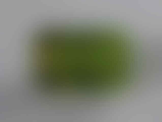 Seakorsky's Natural Gemstone/Batu Berharga (Updated)