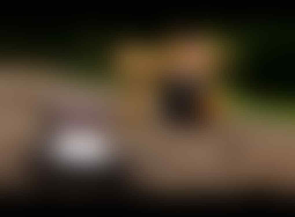 [WTS] Lensa Jupiter 9 85 F2 Mount M42 - Tajem+Bokehnya Ajiiib