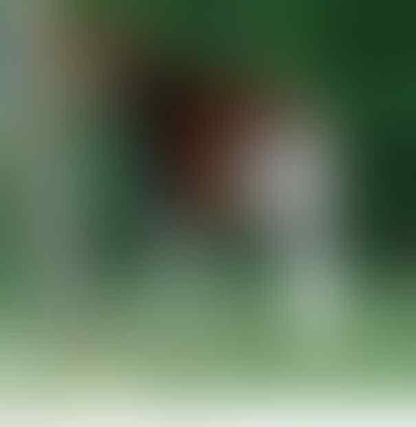 [+PICT] 21 HEWAN ANEH YANG JARANG DIKETAHUI