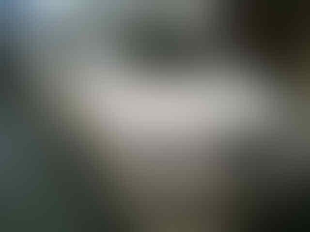 TOYOTA HARRIER FULL LEXUS WHITE