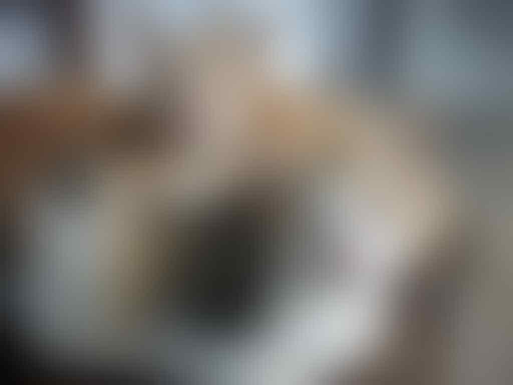 help me gaaaan, kucing kesayangan ibu ane ilang gan