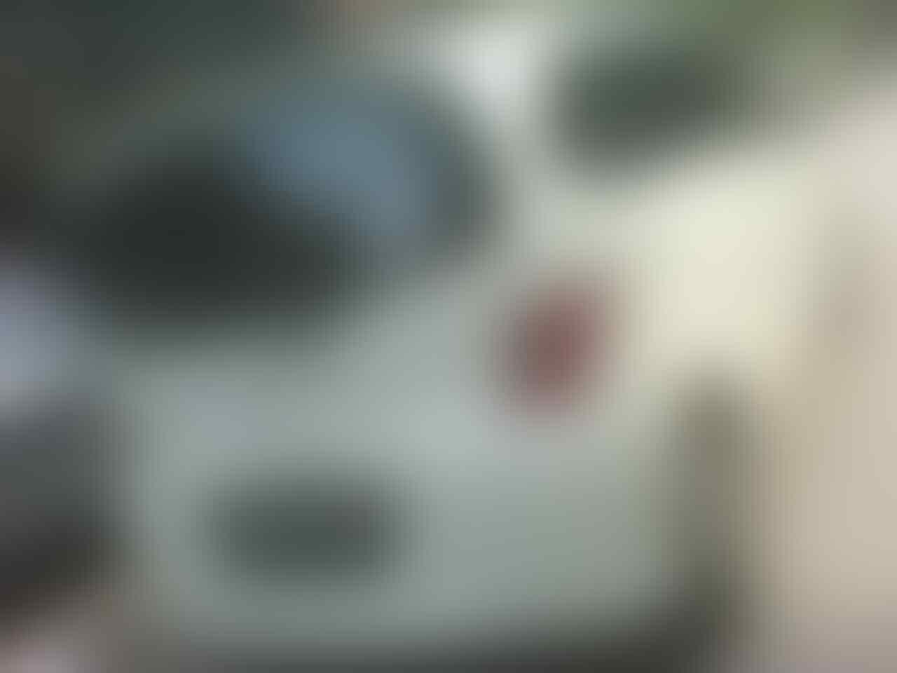 Honda Freed 2010 PSD white A/T Istimewa Pemakai