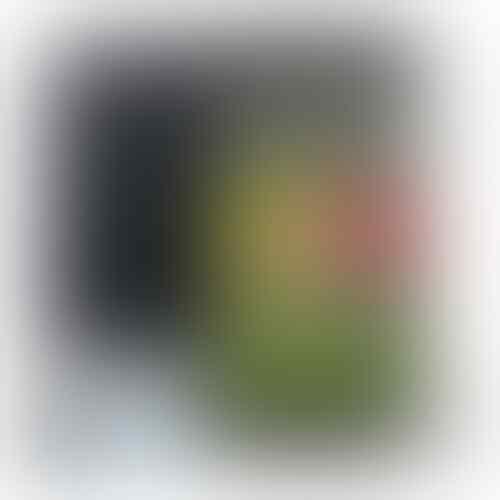LG G Pro Lite - Black/White