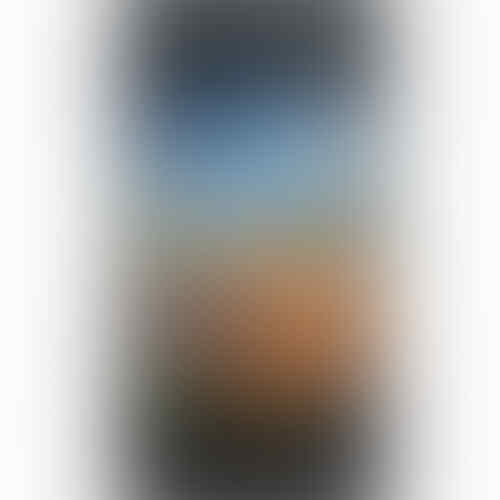 LG Optimus L5 - E612 Black
