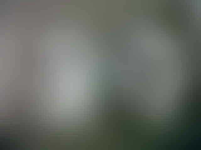 JUAL topeng Anonymous, Phantom, Hokey mask, Jabbawokez Murah
