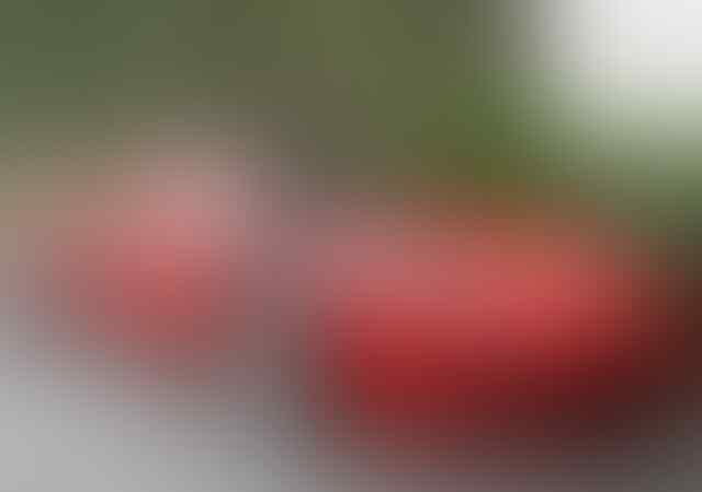 "[Breaking News] Paul Walker Bintang Film di ""The Fast & The Furious"" meninggal dunia"