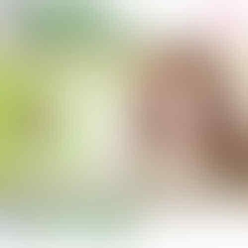 Pinkinparadise™ SUMMER DOLL® Japan Softlens / Soft Lens / Contact Lens