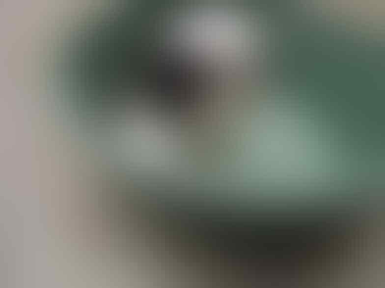 Jual Anak Anjing Mini Shih Tzu umur 2 Bulan Area Surabaya