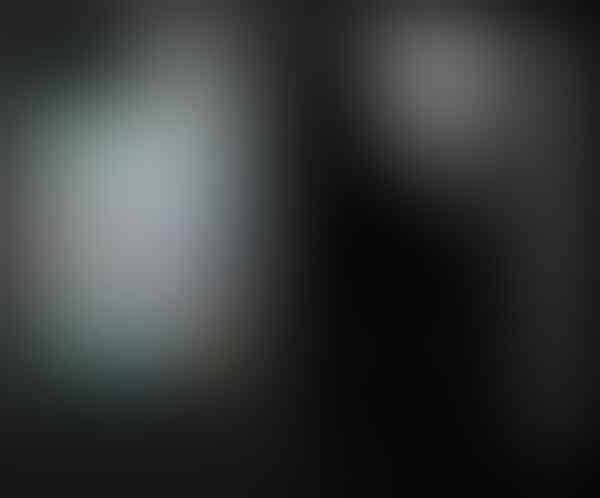 BlackBerry® Tourch II 9810 dan Harga Terbaru