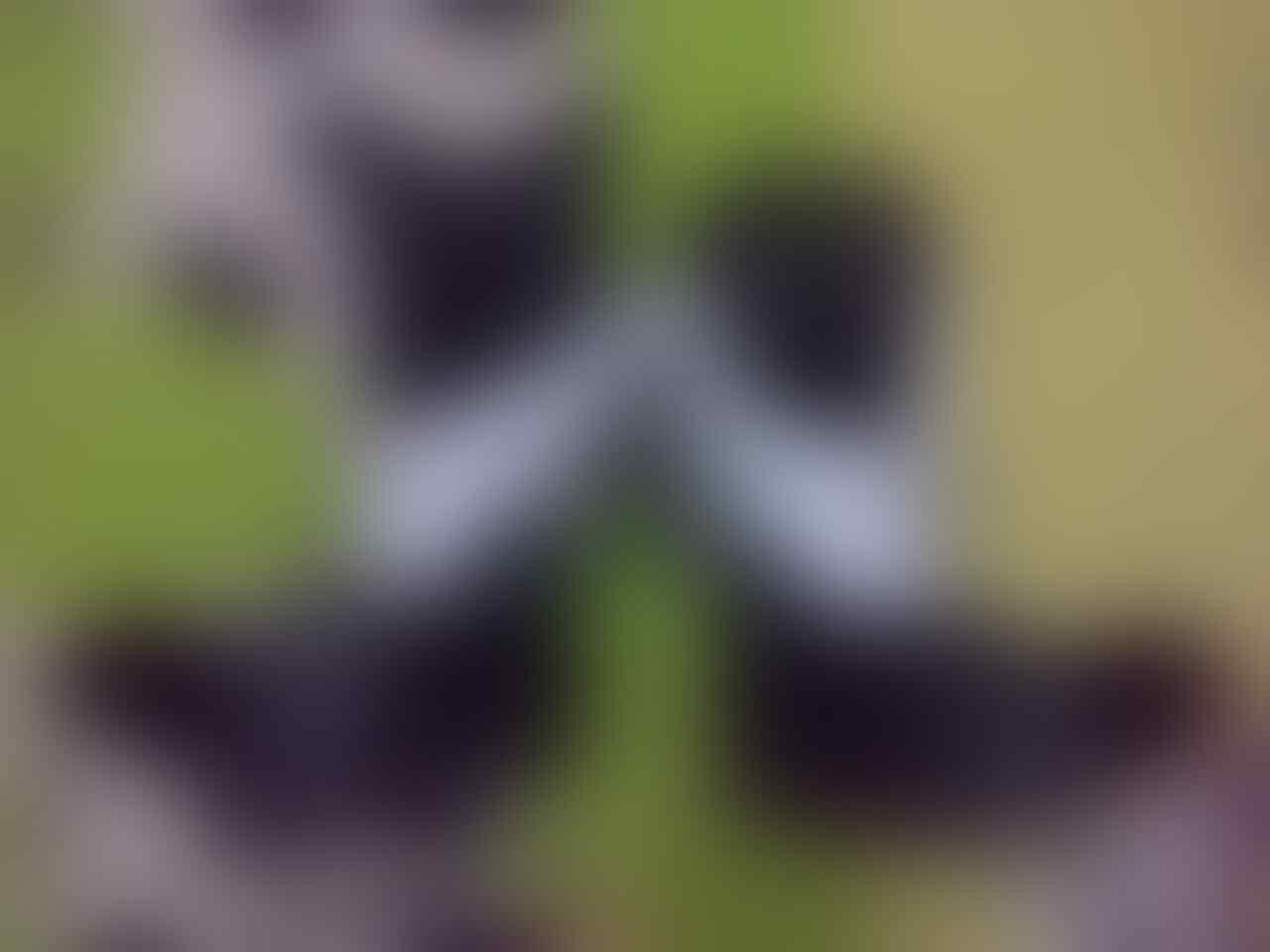 (WTS)glove roadrace HRP 76 gp pro hitam putih size L