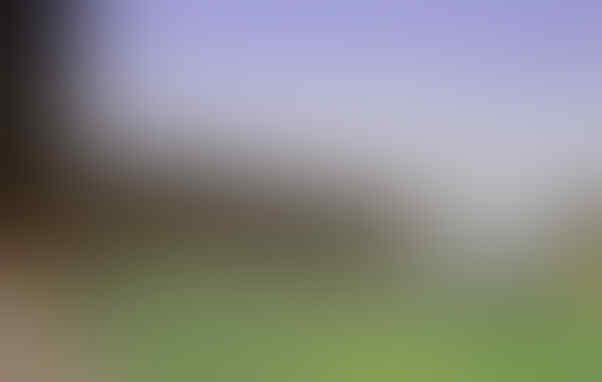 Transformasi Stadion Milik Klub-Klub di Liga Inggris
