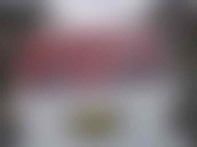 ngakak!!! Poster JOKOWI jadi CAPRES udah di pampang di ANGKOT